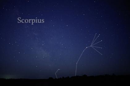 Scorpius_rising